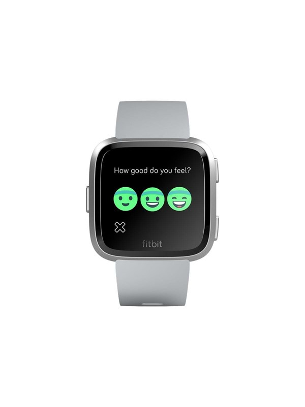 Image of   Fitbit Versa - one size - grey/silver