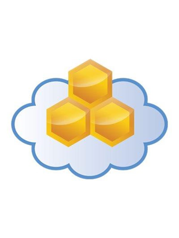 Image of   Aerohive Networks HiveManager Classic Online -