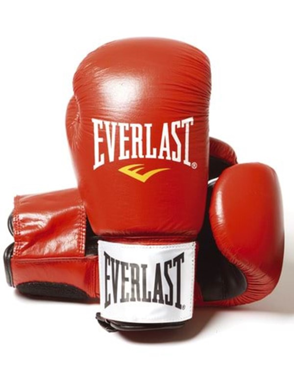 Image of   Everlast 8oz Red - Leather Boxing Gloves