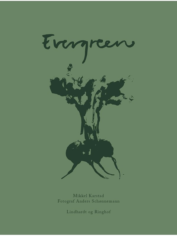 Image of   Evergreen