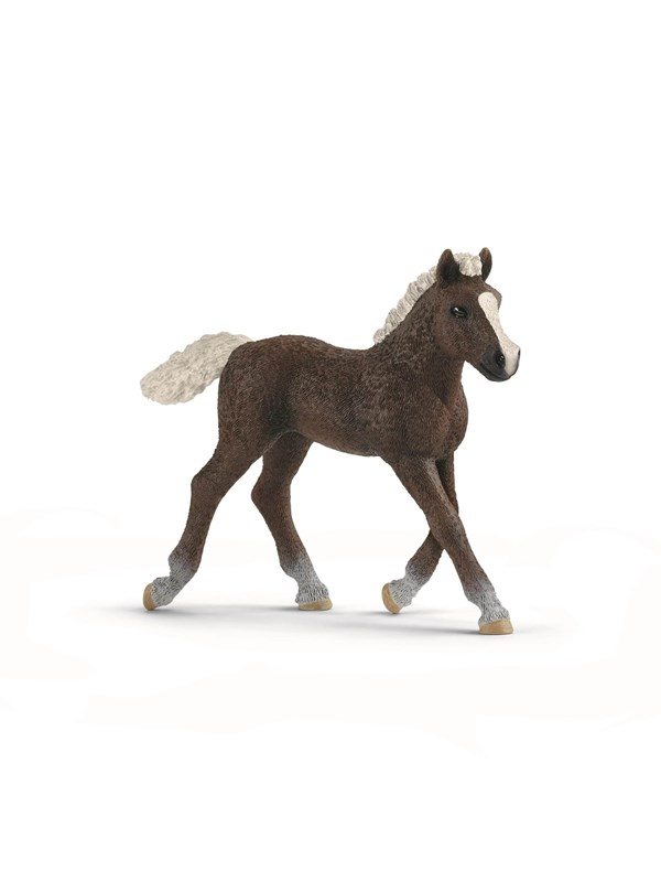 Image of   Schleich Black Forest Foal