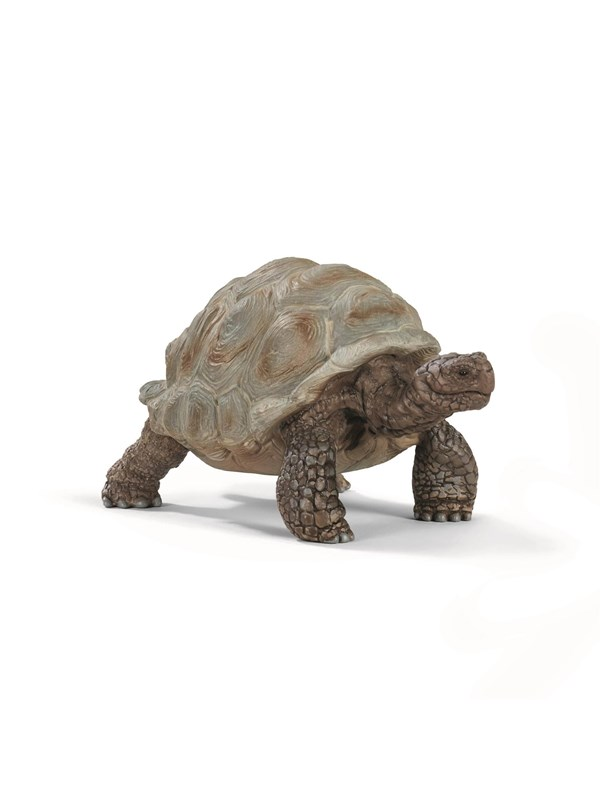Image of   Schleich Giant Tortoise